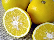 Three yellow color sweet lime fruit one cut food round healthy juicy sugary