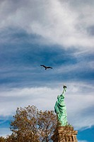 Bird flying over Statue of Liberty, New York