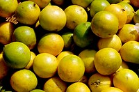 Indian fruits lemon