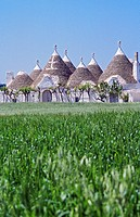 The trulli, traditional Apulian stone dwelling with a conical roof, Itria Valley