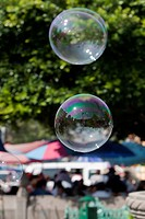 Soaps Bubble