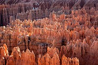 Bryce Canyon National Park, Utah. USA