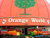 Orlando, FL, Florida, Kissimmee, Orange World, fruit stand, grapefruit, oranges, World's Largest Orange