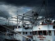 Fishing boats, Getaria, Gipuzkoa, Basque Country, Spain.