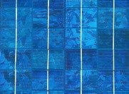 Close up of photovoltaic solar cells on a panel.