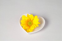 a flower in heart shaped dish