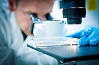 Scientist using a microscope to study cell cultures.