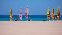 24.06.2007,Spain,Canary Island,Fuerteventura, Morro Jable:Multicolored Hobie Cat Catamaran sailing boats at the beach of Fuerteventura canary Islands ...
