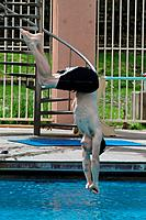 Drake Bell - Los Angeles/CA/United States - DRAKE BELL PRACTICES DIVES FOR SPLA