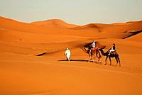 Erg Chebbi desert near Merzouga, southeast Morocco.