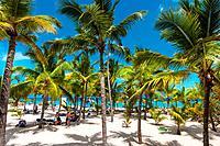beach; Riu Palace; hotel; Punta Cana; Dominican Republic; Caribbean.