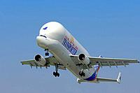 Airbus A300-600ST Super Transporter, transport aircraft taking off