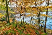 lake district; cumbria; england; uk; europe;.