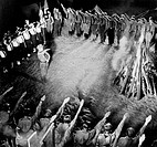 Hitler Jugend celebrate the Spring Solstice with fire.  They perform 'Hitler salutes' while gathered around the burning fire.