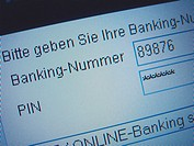 log in data for online-banking - 01/01/2009