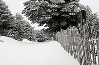 Guadarrama National Park, snowy lanscape with wooden fence, Cotos mountain pass, Rascafria, Navacerrada