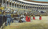 Spanish Bullfighting Series. Horses injured by the bull.