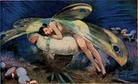 An elegant fairy asleep on a mushroom.