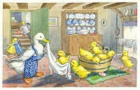 A mother duck giving her babies a bath. Illustration by Molly Brett.