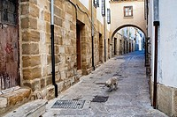 Typical Street of the world heritage city in Baeza, Street Barbacana next to the clock tower, It is characterized by the union of two houses with a pa...