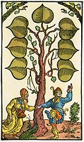 16th century German playing card. From Illustrierte Sittengeschichte vom Mittelalter bis zur Gegenwart by Eduard Fuchs, published 1909.