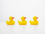 Three rubber ducks in row