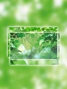 Digital composite of tree