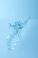 Row of glass bottles, one with flower, blue background, soft focus