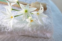 Flowers on a folded towel
