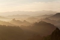 Mountain range surrounded by fog
