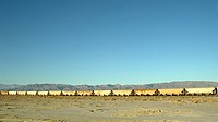 Railroad Cars in Desert