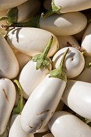 Close up of white eggplant at open air Farmers Market