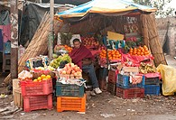India: Punjab: Street fruit shop