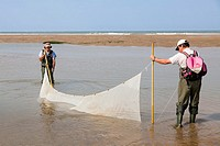 Two fishermen trawling for fish on the beach with a net in a in a pool left by the receding tide.
