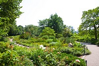 Heather Garden at Ft. Tryon Park, Inwood, Manhattan, New York, NY, USA. Olmsted Brothers firm â?? formed by sons of Frederick Law Olmsted, step-brothe...