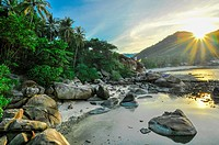 Limestones panoramic tropical beach with coconut palm. Koh Samui,