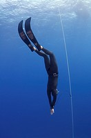 Freediving in Red Sea, Egypt.