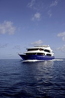 M/Y Duke of York, liveaboard, Maldives, Indian Ocean