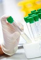 Samples. Biological test laboratory. Chemical Analysis Laboratory. Technological Services to Industry. Tecnalia Research & Innovation, Donostia, San S...