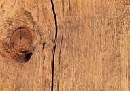 Natural Oak Wood Timber Knot closeup background