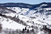 Winter landscape, Black Forest, Baden-Württemberg, Germany