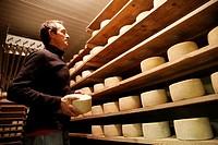 France,Roussillon,Pyrenees-Orientales, Prades, Saint-Michel-de-Cuxa abbey, Mr Civil shepherd of 200 ewes and cheese maker.