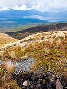 Public track at Tongariro National Park, New Zealand
