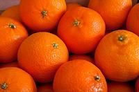 Oranges Clementines.