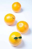 Still life of orange
