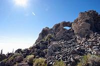 Giant Cacti (Trichocereus Pasacana) Cover Incahuasi Island (Isla De Pescadores) In The Salar De Uyuni, Potosi Department, Bolivia