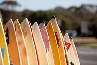 Second-hand surfboard shop. Angelsea, Victoria, Australia.