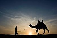 camel ride, jaisalmer, rajasthan