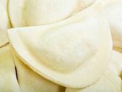 Frozen Ravioli Close Up