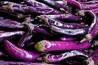 many eggplants